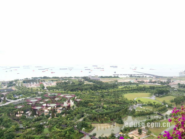 新加坡科廷大学排名