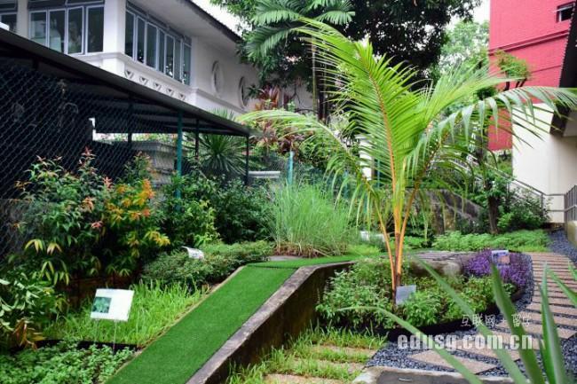 新加坡莎瑞管理学院入学条件