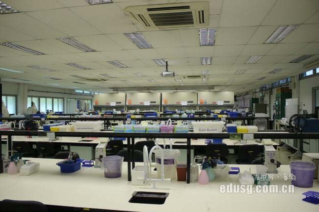 新加坡莎顿国际学院专业学费要多少
