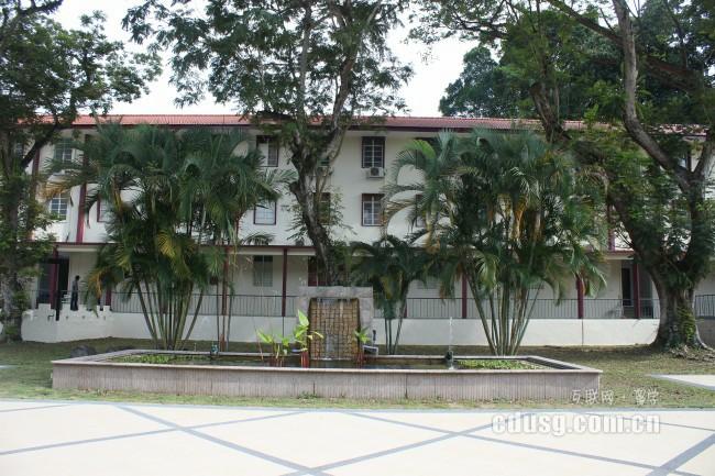 中学去新加坡留学
