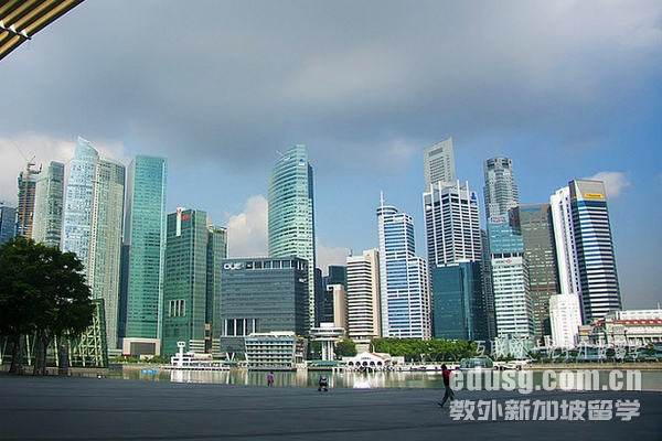 新加坡商科专业就业