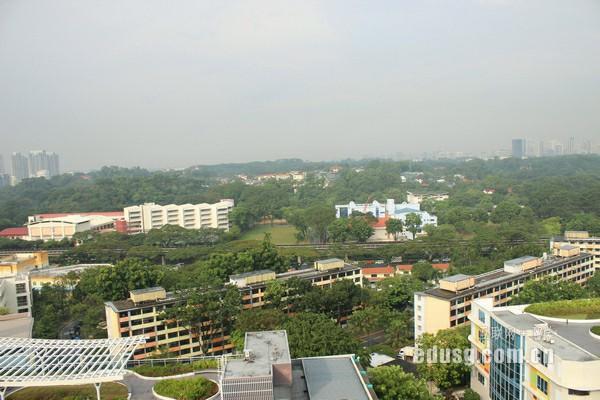 新加坡南洋现代管理学院地址