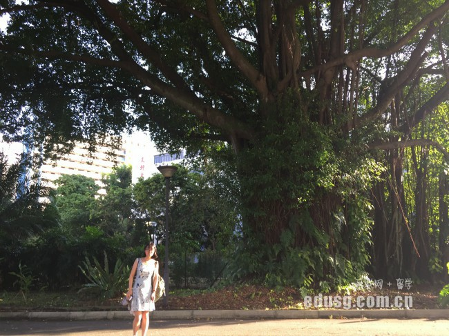 到新加坡留学一年大概要多少钱