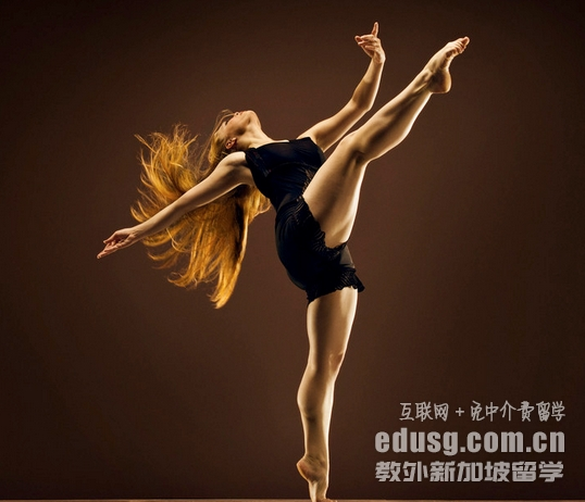 留学新加坡舞蹈专业申请流程