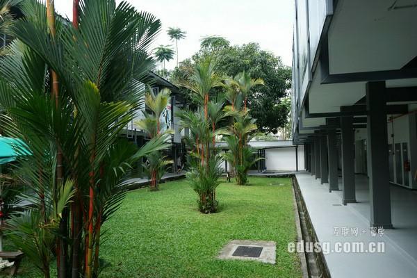 新加坡工科大学排名