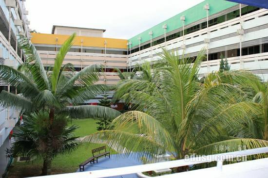 新加坡大学预备班课程