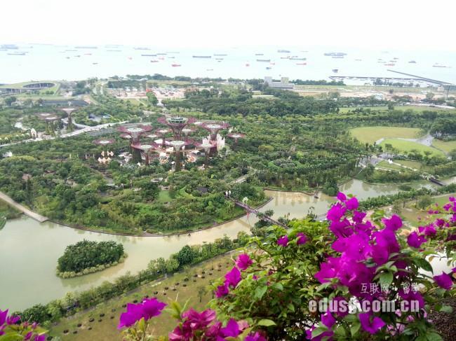 新加坡留学去哪个私立大学