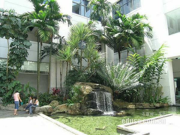 新加坡共和理工学院有哪些专业