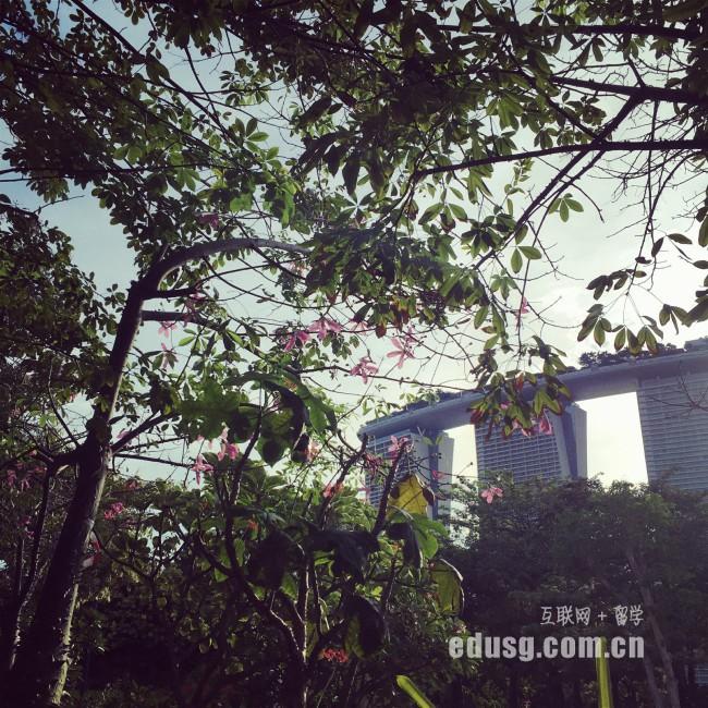 新加坡留学软件专业申请攻略