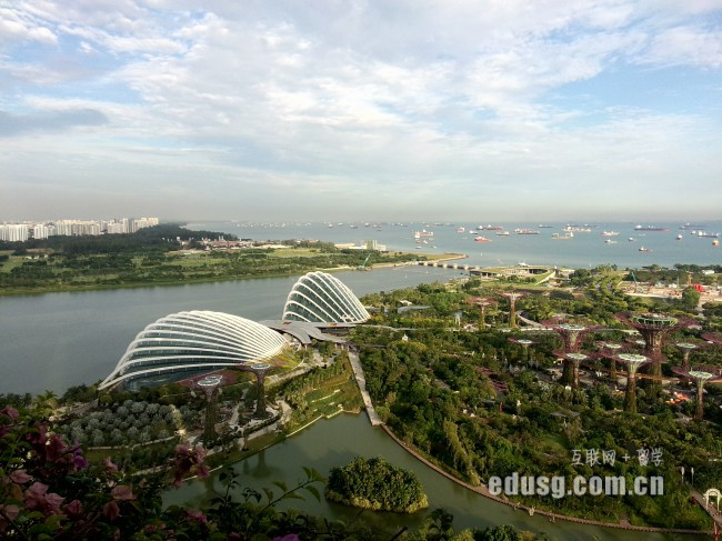 新加坡护理专业毕业生就业