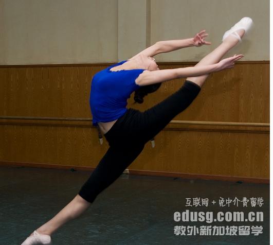 新加坡舞蹈专业申请要求