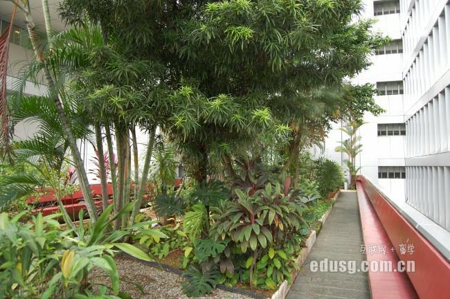 新加坡学旅游管理专业哪个学校好