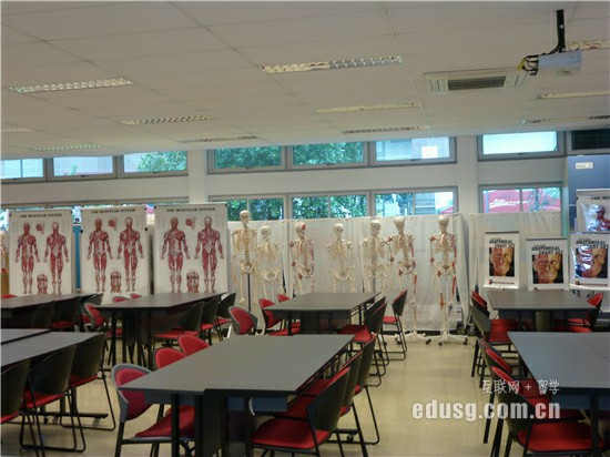 新加坡上学申请