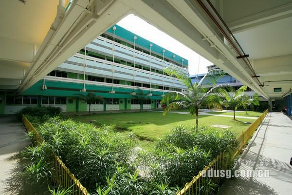 到新加坡读初级学院