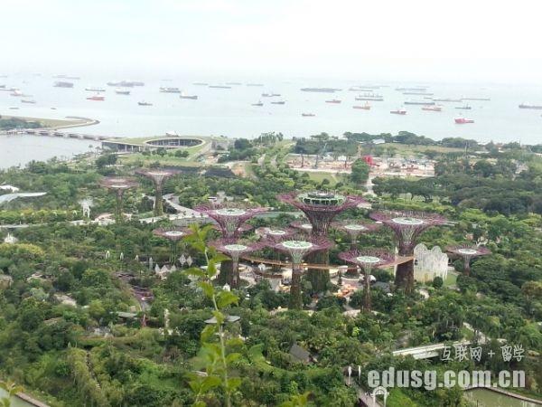 留学新加坡准备什么行李
