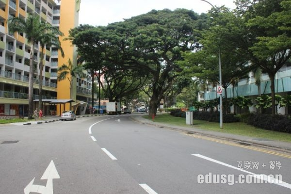 新加坡大学生就业