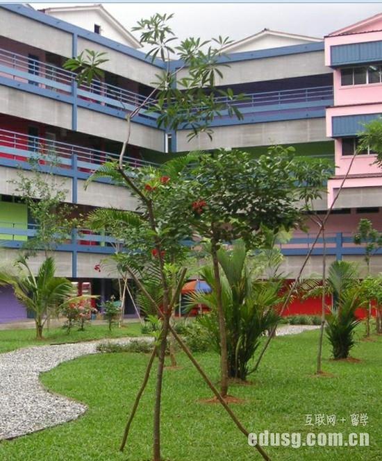新加坡博伟学校小学课程