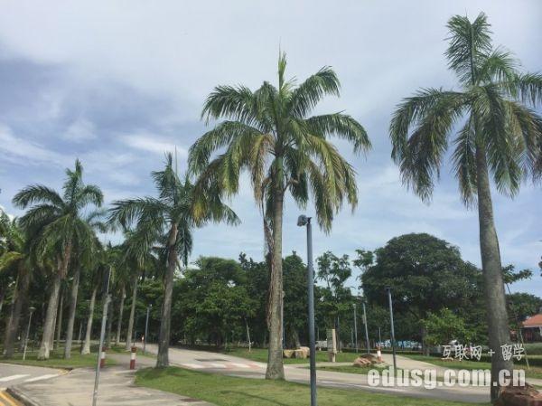 新加坡的中学怎么样