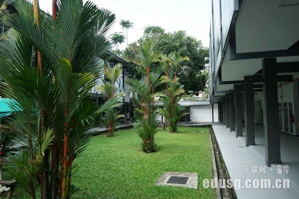 高中去新加坡大学