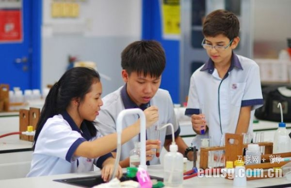 新加坡公立小学的学费