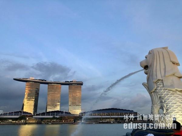 新加坡留学签证电子签