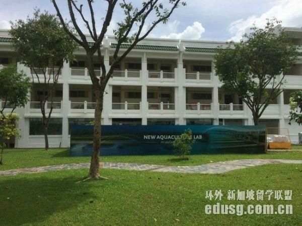 新加坡商科留学成本