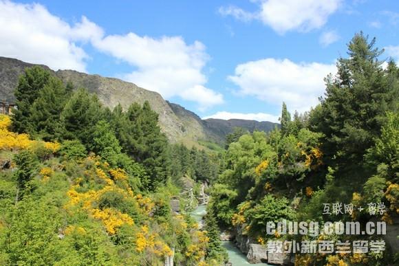 新西兰留学签证的申请步骤