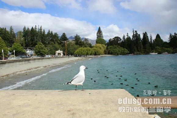 大三去新西兰留学