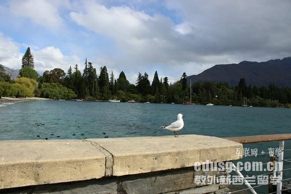 新西兰高中留学一年多少钱