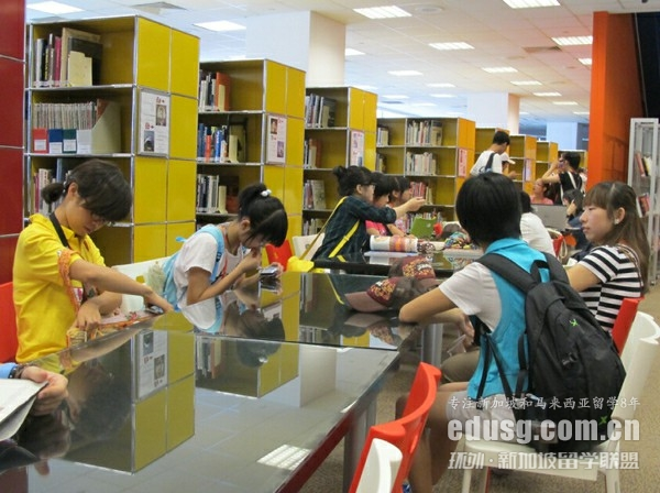 新加坡南洋艺术学院只有大专吗