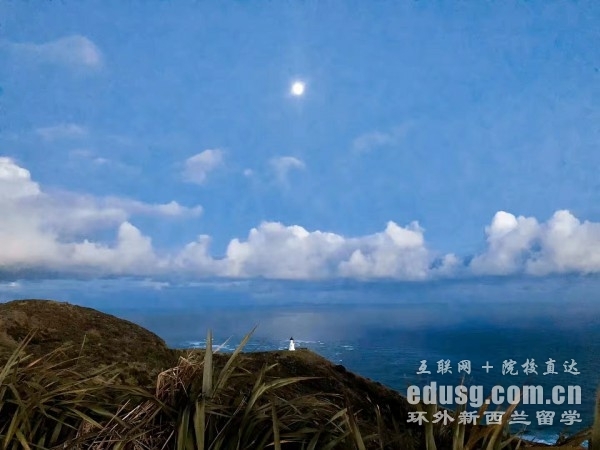 新西兰留学学啥专业好就业