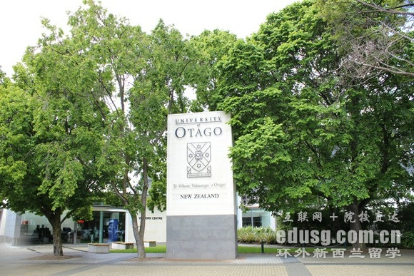 奥塔哥大学艺术专业