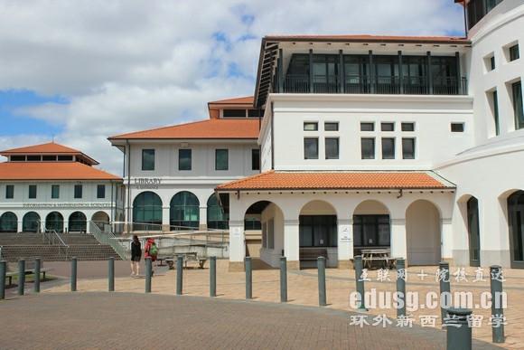 新西兰梅西大学合作办学院校