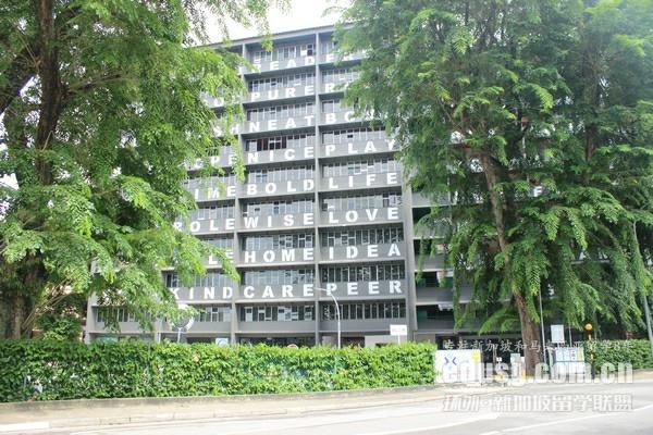 新加坡管理大学本科Alevel申请条件