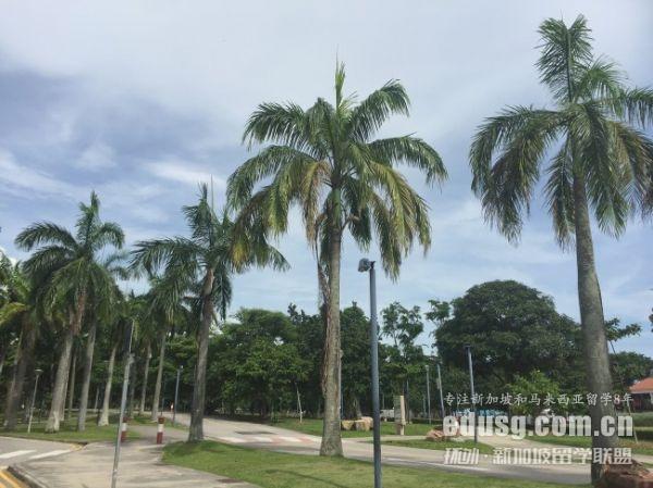 新加坡留学大学自费