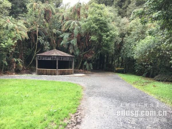 新西兰小学留学条件