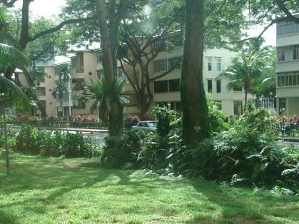 新加坡莱佛仕设计学院地址