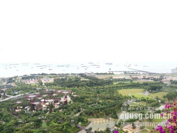 新加坡大学世界排名