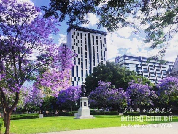 南澳大学排名