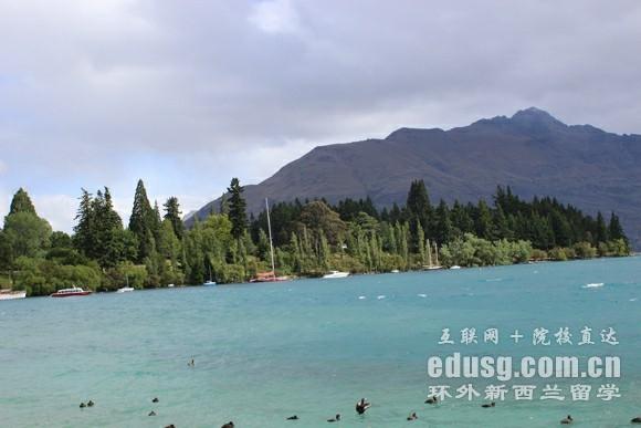 高中生出国新西兰留学