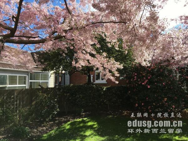 新西兰的大学申请费用是多少