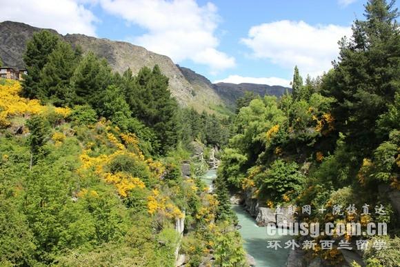 高中毕业留学新西兰