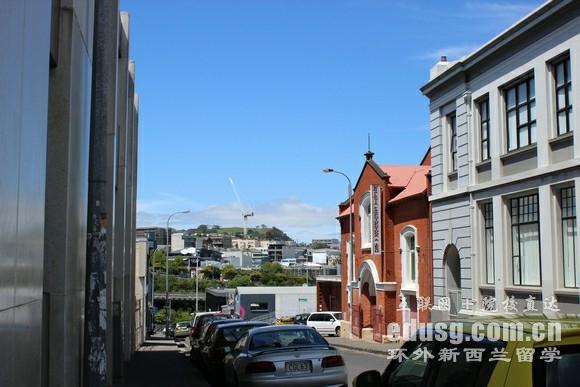 怎么去新西兰读大学