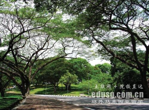 马来西亚理科大学本科