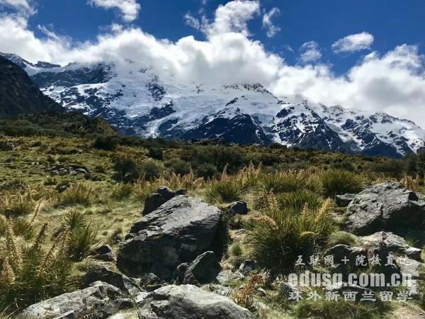 新西兰留学预科项目