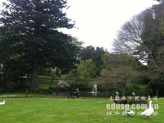 高考完新西兰留学一年花费