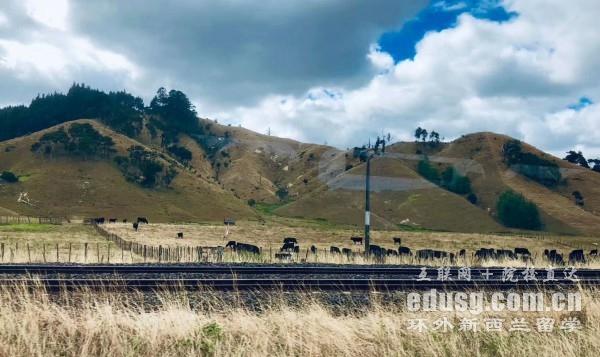 新西兰留学什么时候可以入境