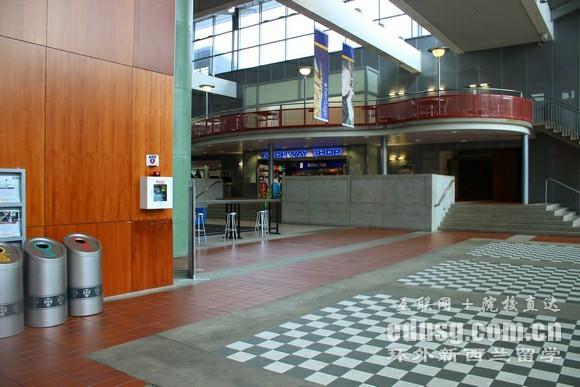 新西兰奥塔哥大学排名