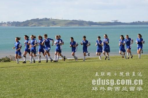 新西兰麦克林斯中学一年多少钱