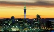 新西兰大学八大名校